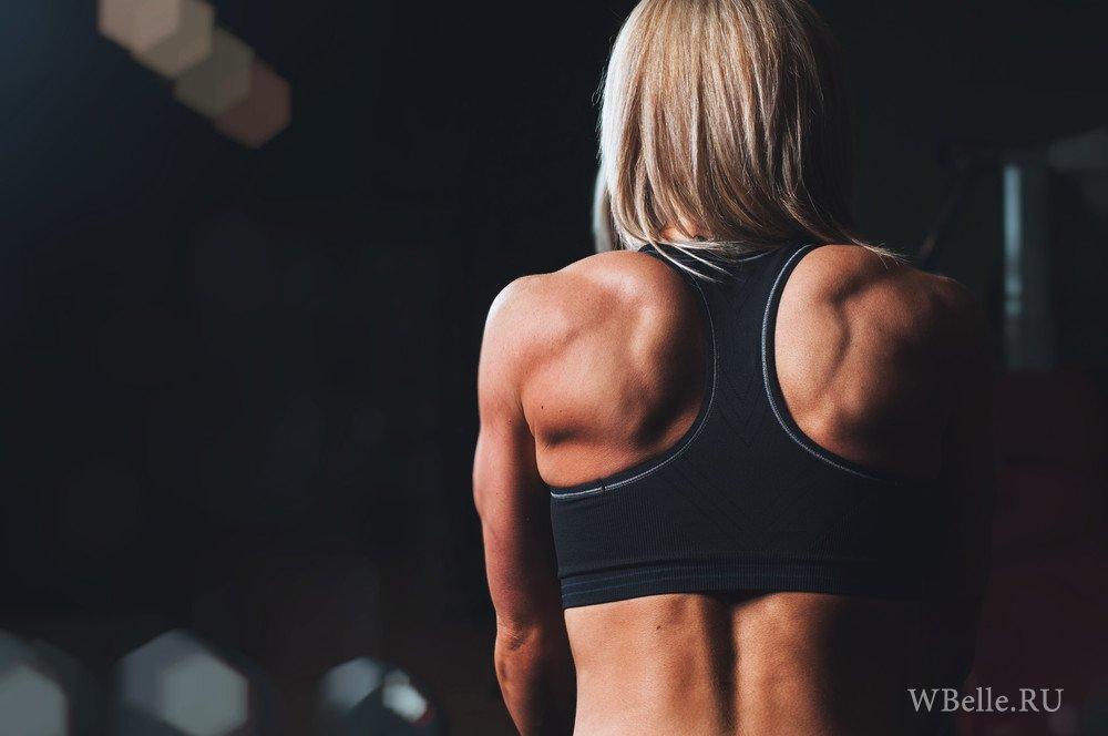 Секс мышцы спины